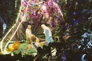 pexel nativity
